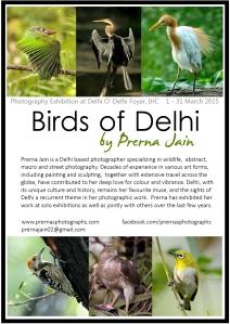 Prerna Birds Poster